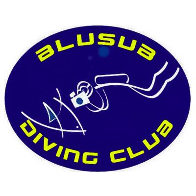 blusub_ok